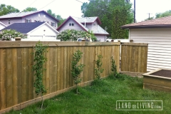 Edmonton Fence five feet tall pressrue treated fence