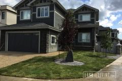 Edmonton landscaping front yard design