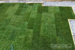 Edmonton landscapingTbar sod installed 2