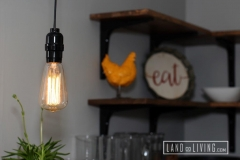 Edmonton Home Renovaton Edison light bulb
