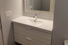Landco-living-edmonton-basement-bathroom-1